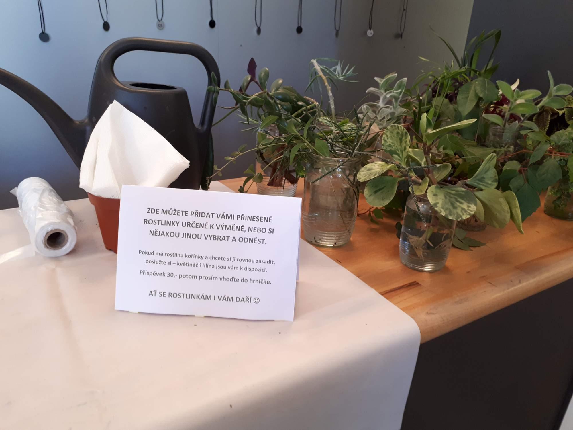 Vybrat a zasadit si kytičku do čerstvé hlíny mohli zájemci za třicet korun. Foto: Jana Blahošová