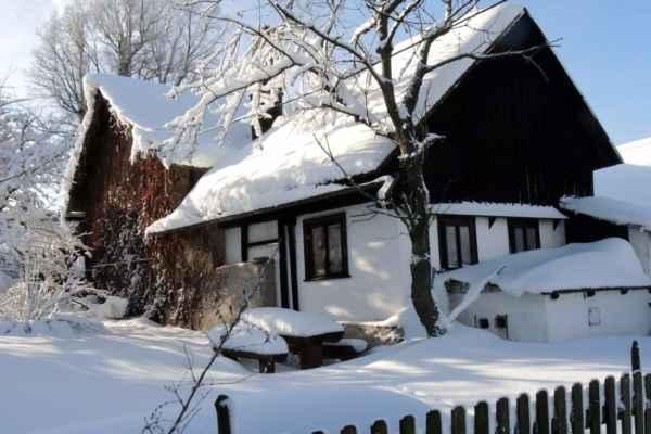 Zima 2019 v Pusté Kamenici