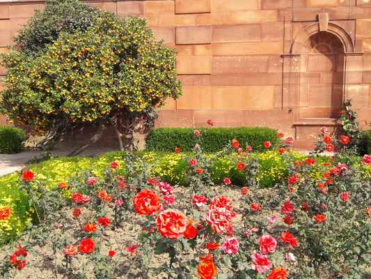"""Dlouhá zahrada nebo """"zahrada Purdha"""": nachází se na západ od hlavní zahrady a vede po každé straně centrální chodby, která vede do kruhové zahrady. Uzavřená ve stěnách o výšce 12 stop je převážně růžovou zahradou. Má 16 čtvercových růžových polí uzavřených v nízkých živých plotů. V centru nad centrální dlažbou je červená pískovec pergol, která je pokrytá růžičkami, Petrou, Bougainvillea a vinnou révou. Stěny jsou pokryté držáky jako Jasmine, Rhyncospermum, Tecoma Grandiflora, Bignonia Vanista, Adenoklyma, Echitice, Parana Paniculata. Podél zdí jsou zasazeny stromy čínské pomeranče."""