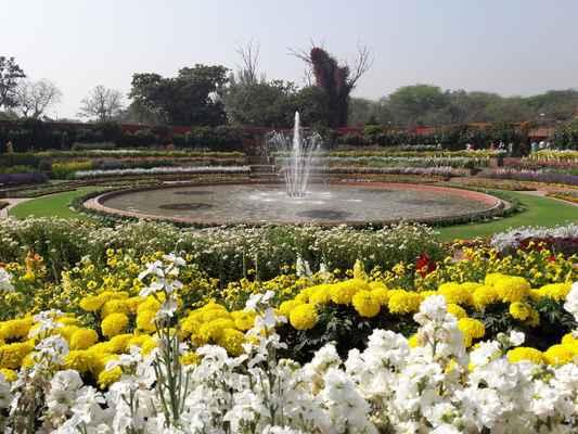 Všichni prezidenti, kteří zůstali u Rashtrapati Bhavan, se intenzivně zajímali o údržbu a údržbu zahrad Mughal. Všichni přispěli svým způsobem. Základní témata však zůstaly nezměněny.