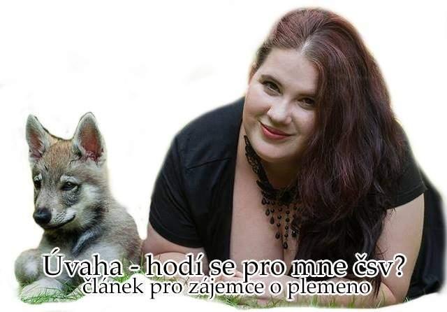 http://www.sdivokoukrvi.cz/planovane-vrhy/pro-koho-se-hodi-ceskoslovensky-vlcak