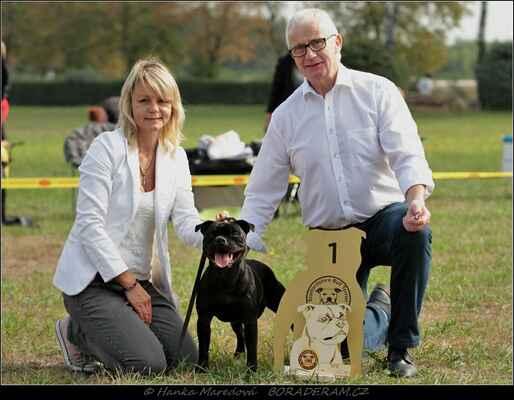 Zizu Macy Gray (Because I´m Terrystaff X Pepita Wizard Bull) - Nejlepší štěně výstavy - Best Puppy Bitch, Best Puppy in Show
