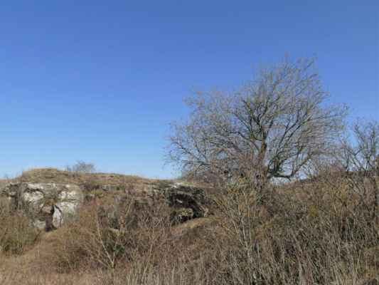 ... dokonce i skalní ksichtík má radost z dnešního krásného dne ....