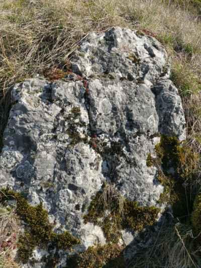 ... a u tohoto kamene jsem si udělala krátkou pauzičku, moje záda si to vyžádala ....