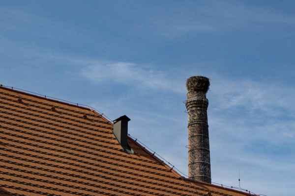 Čapí hnízdo u hradu
