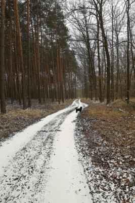 My čekali jaro, zatím přišel sníh (parafráze Greenhorni) - 21.3.