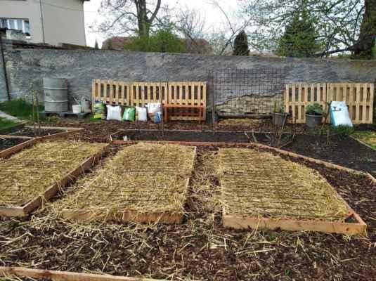 29.4.2021 Po dostavění pergolky ve velké zahradě bylo možné konečně použít zbylé kari sítě na záhony. - Palety, původně zamýšlené na kompostér a na lavičku, zatím zůstanou u zdi, kde budou v pytlích se zbylým kompostem papriky a drobná rajčata.