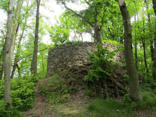zřícenina hradu Prácheň - Pozůstatky gotického správního sídla, které bylo zbudováno Bavorem z Bavorova v první polovině 14. století, kdy zemím vládl rod Přemyslovců. Hrad trojdílné dispozice vystavěný na základech původního hradiště plnil svou rezidenční funkci do poloviny 16. století, následně byl opuštěn a postupně chátral. Dodnes se z památkově chráněného objektu dochovaly relikty obvodových hradeb a terénní nerovnosti v podobě valů.