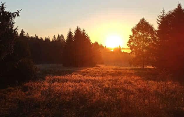 Slunce po východu u Nové Hůrky