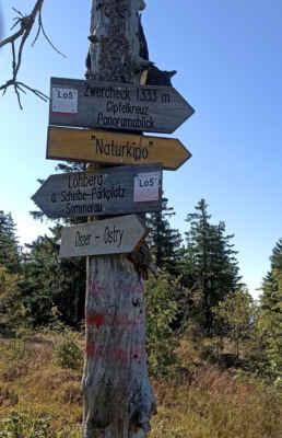 na stezce k bavorskému vrcholu