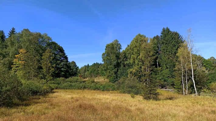 V noci chladné a přes den slunečné dny přidávají postupně podzimu na barevnosti