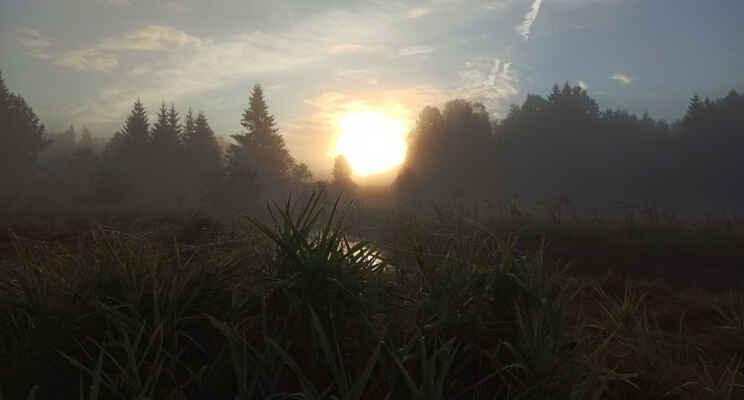 Počasově podzimní ráno u Studené Vltavy v Novém Údolí (17.9.)