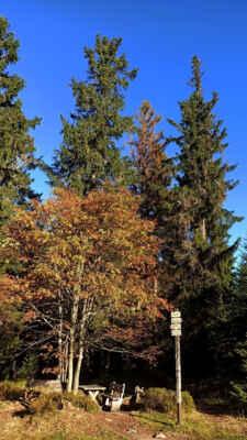 Podzim na Stráži :)