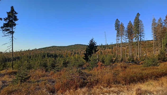 Siebensteinkopf v podzimním hávu