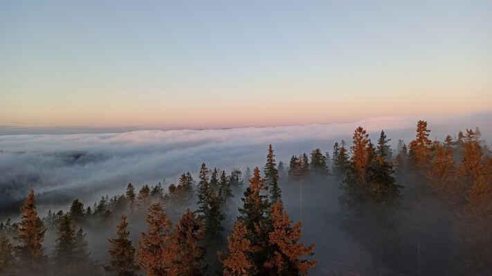 z oblačnosti koukají stromy jen na samotném vrcholu