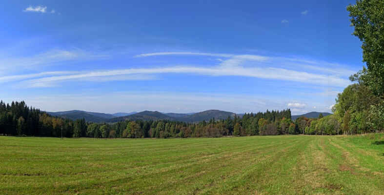 Radvanovické pastviny s panorama centrální Šumavy s Luzným, v popředí Homole, Strážný a Žlíbský vrch (1133 m). 2.října, stromy se začínají barvit