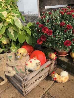 ZŠ Mžany - 2021/09 - Zvířátka z brambor (ŠD)