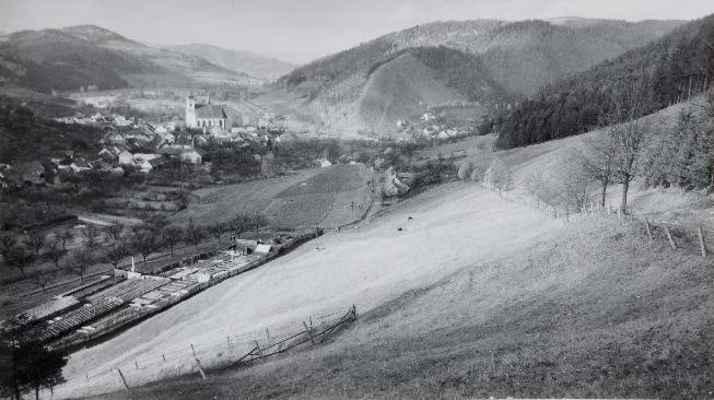 Pohled na Doubravník z Pláňavy (1954). V levé části snímku areál zahradnictví.