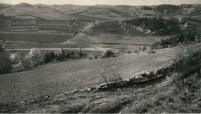 Pohled z Pláňavy přes Roviny na osadu Maňová (téměř na horizontu). Za silnicí žlebem vede cesta přes Cigány a stáčí se vpravo na Zábozinčí. (r.1954 ?)