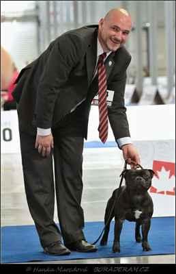 Front Runner Domidar Dogs (Breno Domidar Dogs X Beretta Domidar z Hambalek Bušín) - Třída šampionů - psi - známka: výborný 3