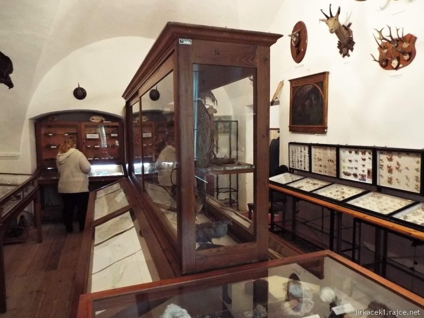 Zámek Ždánice - Vrbasovo muzeum - přírodovědecká expozice minerálů, motýlů