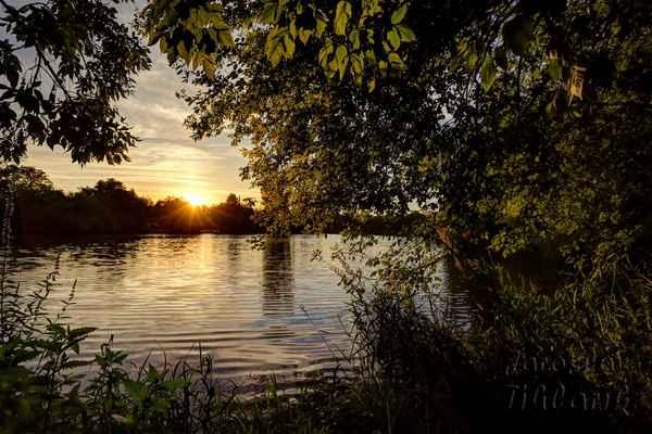 Slepé rameno řeky Moravy, přírodní památka Čerťák, chráněné území, západ slunce.