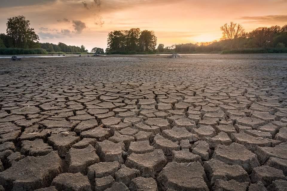Sucho, které poslední roky hýbe českou krajinou