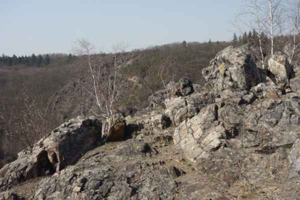 Výhled na Purkrabský háj.