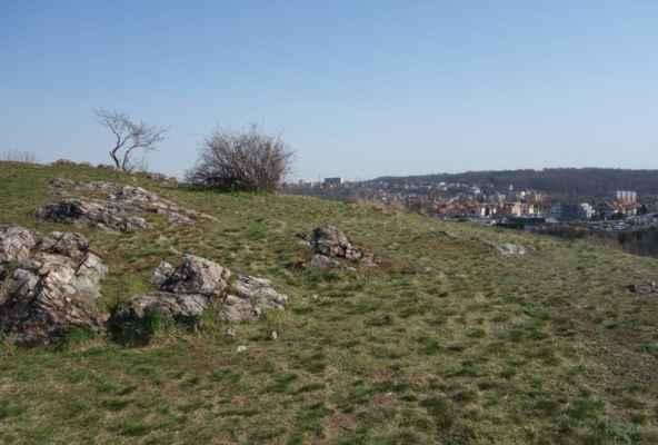 Slované se zde usadili už v 6. století a ve starší době hradištní v 7. - 8. století vybudovali opevněné hradiště. V 9.století postupně zaniklo. Tehdy zemi vládla první historicky doložená přemyslovská knížata Bořivoj I. a po něm Spytihněv I. Zánik zřejmě souvisel i se směnou sídelní struktury pražské kotliny.